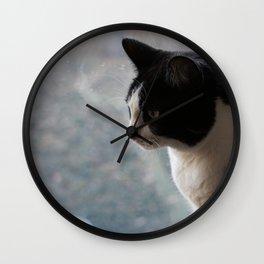 Soft Portrait of Cat Wall Clock