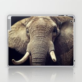 Elephant portrait Laptop & iPad Skin