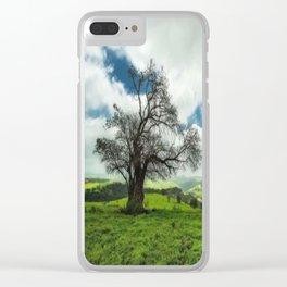 Oman Salalah 5 Clear iPhone Case