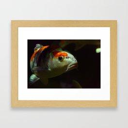 Under Water I Framed Art Print