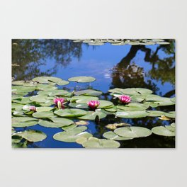 Reflection in  a Pond 1 Canvas Print