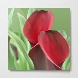 Crimson Calla Lily Metal Print