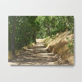 Mount Diablo Summer Path Metal Print
