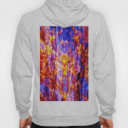 CORAL Violet Symphony of Spring Hoody