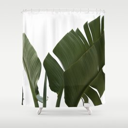 Travellers Palm Leaves 06 Shower Curtain