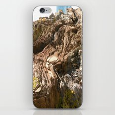 Big Rock by the beach iPhone & iPod Skin