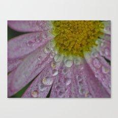 Collecting Rain Canvas Print