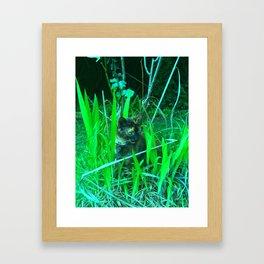Play time in the garden Framed Art Print