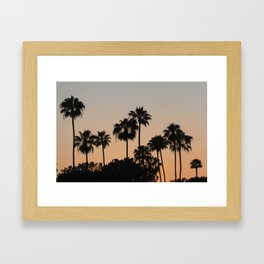 Palm Trees and Sunsets Framed Art Print