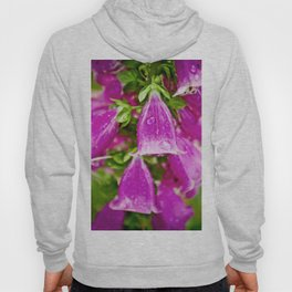 Bell Flowers With Raindrops Hoody