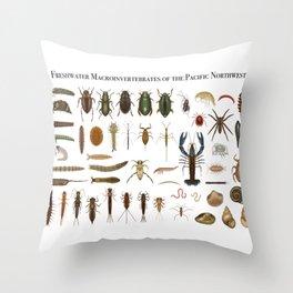 Freshwater Macroinvertebrates of the PNW Throw Pillow