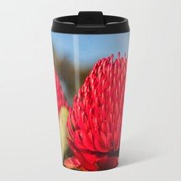 Huge red Waratah flowerheads in spring Travel Mug