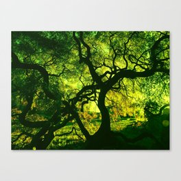 Green is the Tree Canvas Print