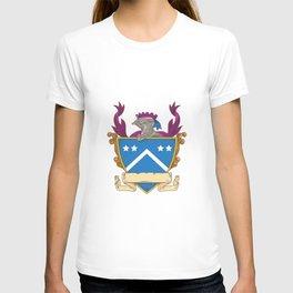 Knight Helmet Star Chevron Drawing T-shirt