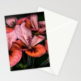 Red flowers up close Stationery Cards