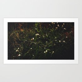 Oh Comely Art Print