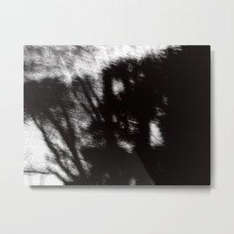 Morning Light Metal Print