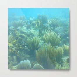 Watercolor Seascape, St John 72, USVI Metal Print