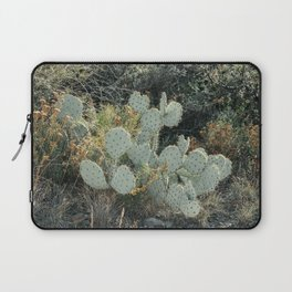 Prickly Pear Cactus in Big Bend National Park Laptop Sleeve