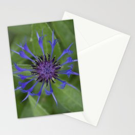 Thin blue flames in a sea of green Stationery Cards