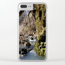Alone in Secret Hollow with the Caves, Cascades, and Critters, No. 7 of 20 Clear iPhone Case