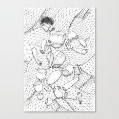 23 Pieces Canvas Print