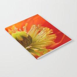 Poppy red macro 071 Notebook