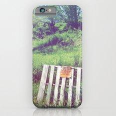 Eastern Edge of Refuge iPhone 6s Slim Case