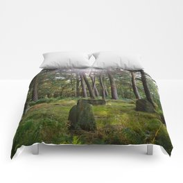 Doll Tor stone circle Comforters