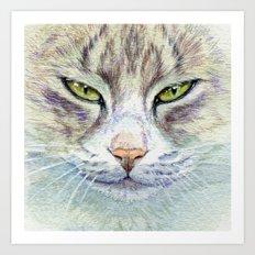 Green-eyes cat 875 Art Print