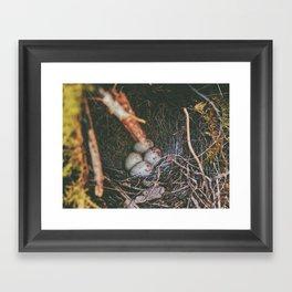 Hidden Gems • Appalachian Trail Framed Art Print