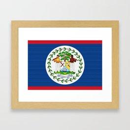 Belize Flag (Canvas Look) Framed Art Print