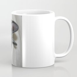 Close Up Portrait Of A Relaxed Grey Cat  Coffee Mug
