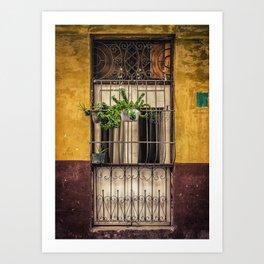 Casco Viejo Door Art Print