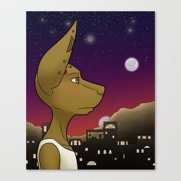 Kiva Canvas Print