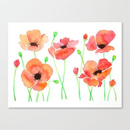 Poppies Flowers Canvas Print