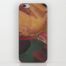 SUPERNOVA / PATTERN SERIES 005 iPhone & iPod Skin