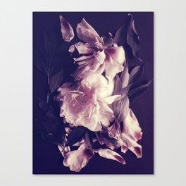 Pink peonies 5 Canvas Print