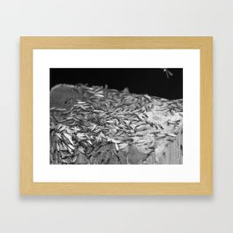 Termites Framed Art Print