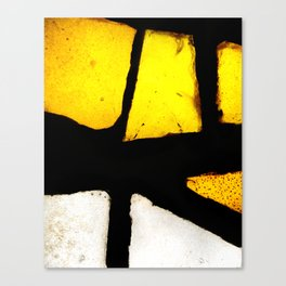 Light and Color II Canvas Print