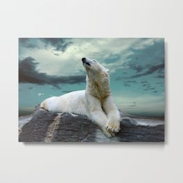 Polar Stretch Metal Print