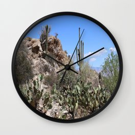 Javalina Rocks Wall Clock