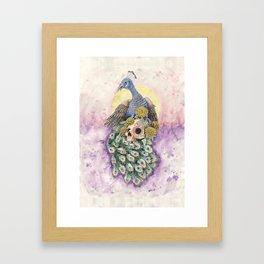 Peacock and Skull Framed Art Print