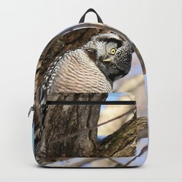 Sizing you up Backpack