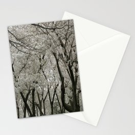 """Crab Apple and Sakura"" Stationery Cards"