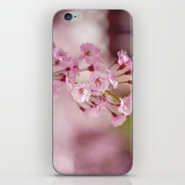 Weeping Willow Flowers iPhone Skin