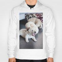 labrador Hoodies featuring Labrador Puppy by Diandra