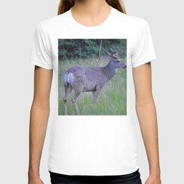 Mule Deer in in Jasper National Park T-shirt