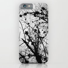 Spooky Tree Silhouette iPhone 6s Slim Case