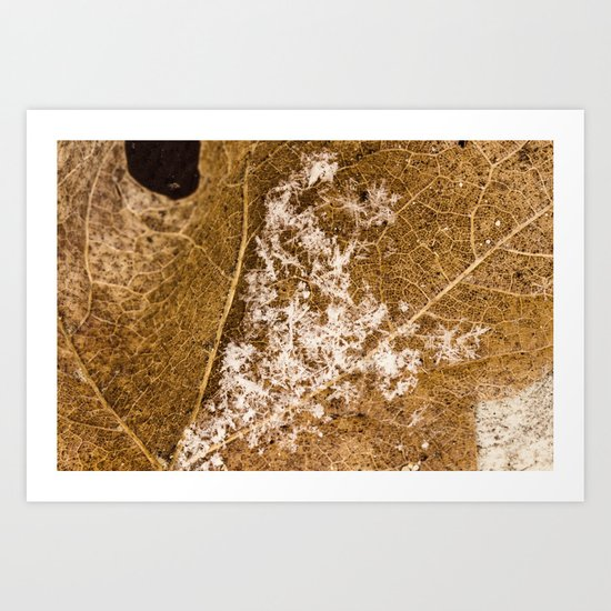 sprinkled Art Print